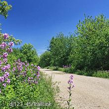 Glacial Drumlin Trail | dj123_45/TrailLink