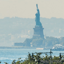 Statue of Liberty from the Highline   Photo by USDA